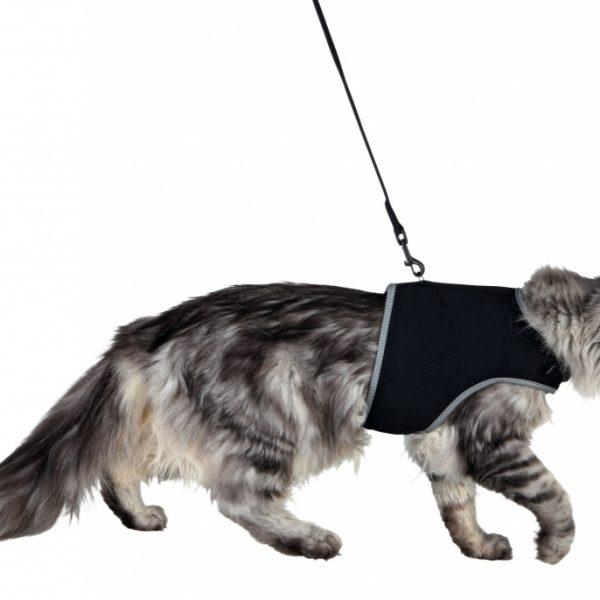 Peitoral com trela para gatos -10411