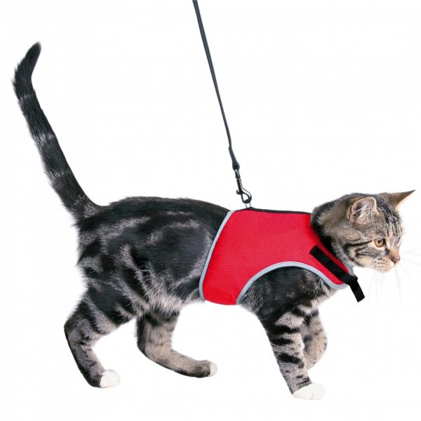 Peitoral com trela para gatos -0