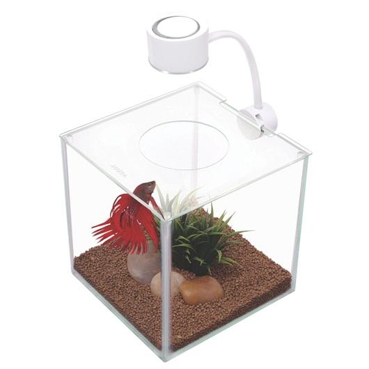 Aquario Kit para Bettas Vidro com Iluminação 3.4L-0