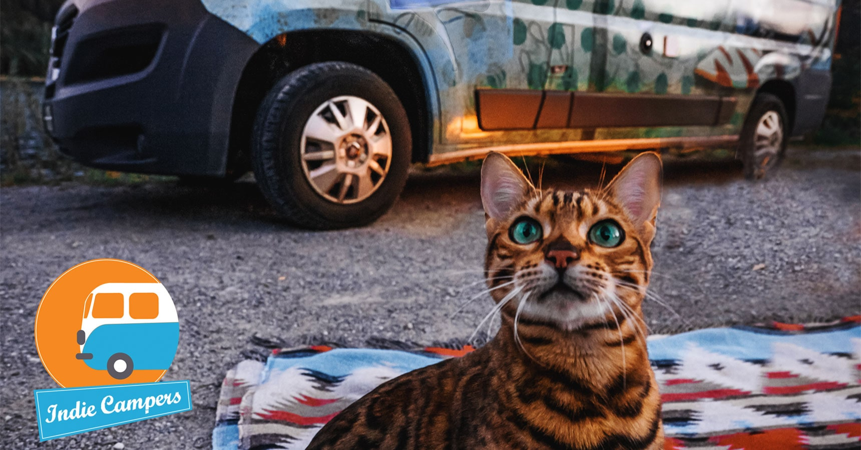 Indie Campers Animais