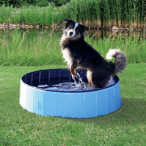 Piscina para Cães-0