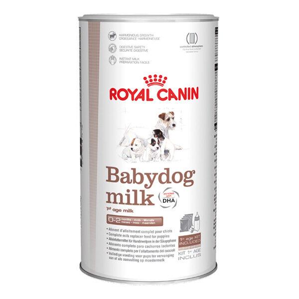 Babydog Milk-0