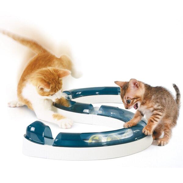 Circuito de Jogo para Gatos-0