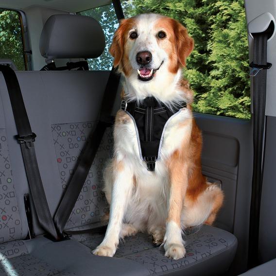 Peitoral de Segurança Dog Protect-0