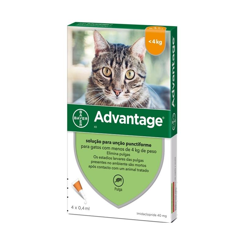 Advantage 40 Gato-0