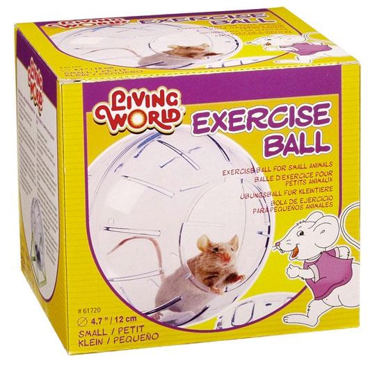 Bola de Exercício Pequena-0