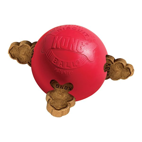 Kong Biscuit Ball-0