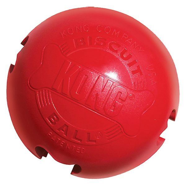 Kong Biscuit Ball-14305