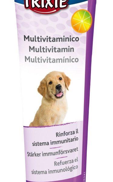 Pasta Vitamínica para Cachorros-0